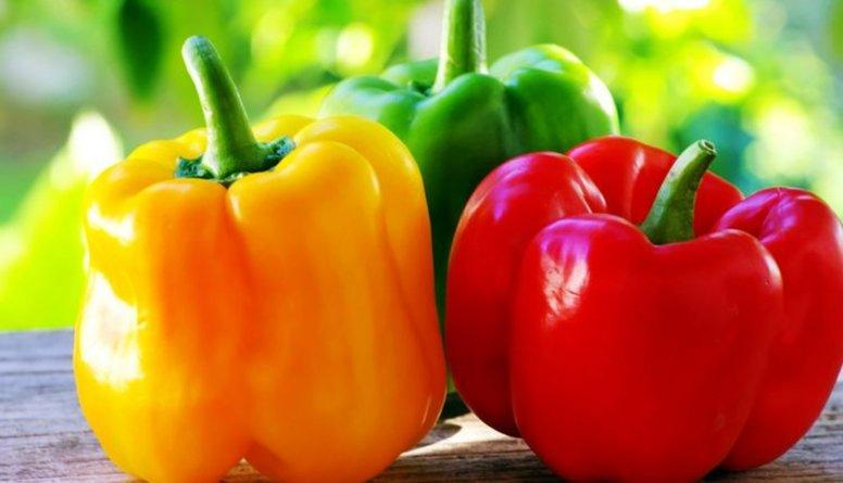 Paprika – čempione dārzeņu vidū C vitamīna satura ziņā!