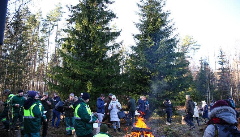 Rīga jau gatavojas Ziemassvētkiem - šodien izvēlas kuplāko egli!