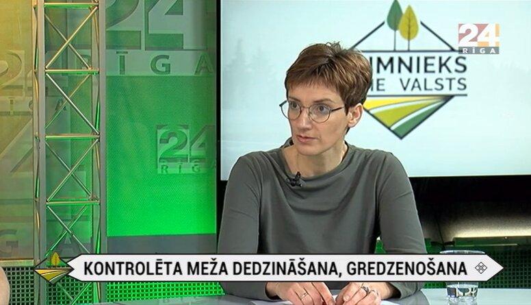 Latvija ir otrajā vietā Eiropā pēc atmirušās koksnes daudzuma