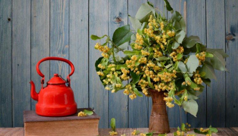 Vai liepziedu, piparmētru un kumelīšu tēju var droši lietot regulāri?