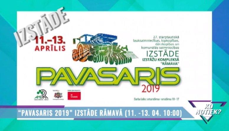 """""""Pavasaris 2019"""" izstāde Rāmavā"""