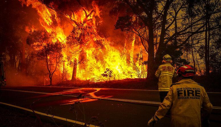 Ošlejs: Parasti ugunsgrēki Austrālijā ir dabiska meža atjaunošanās sastāvdaļa