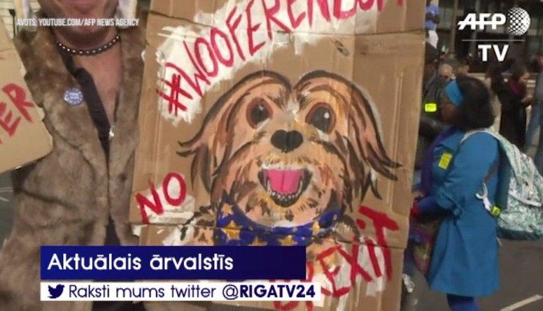 Suņu protesta gājiens pret «Brexit»