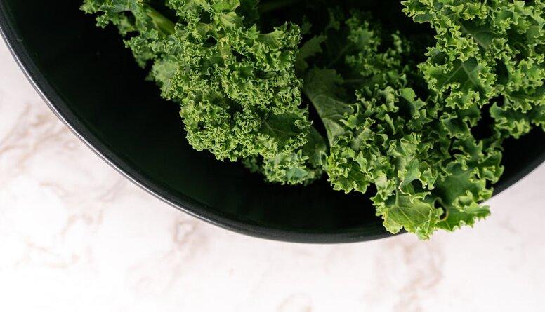 Kāpēc kalē kāposts ir veselīgs un kāpēc jāēd fermentēti produkti?