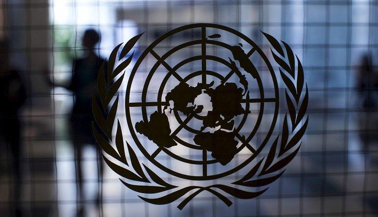 Politologs: Nav skaidrs, kādi būtu ieguvumi sabiedrībai no ANO Migrācijas pakta