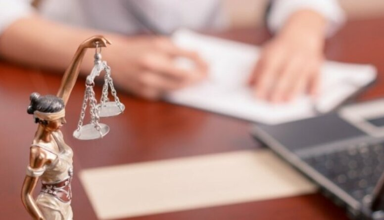 Ineta Ziemele par ekonomiskās tiesas izveidi