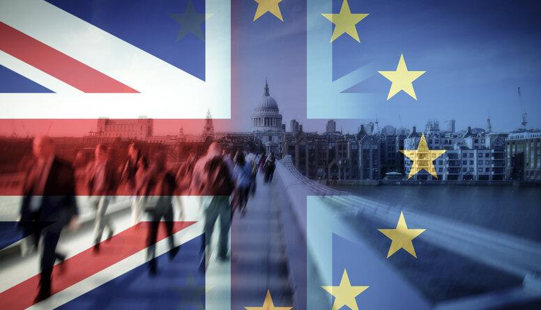 Lolitas Čigānes komentārs par Brexit