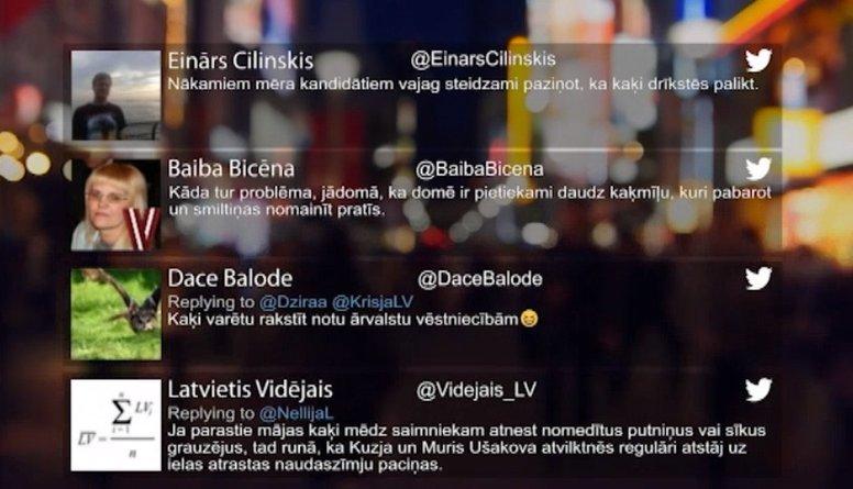 Tvitersāga: Slavenākie kaķi Rīgā!