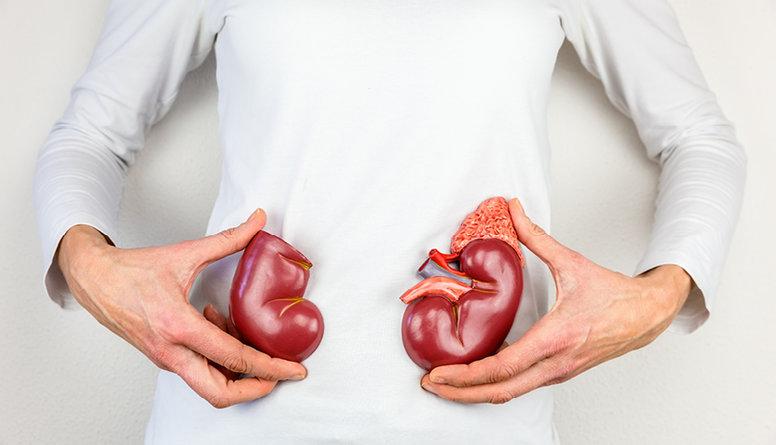 Noskaties: Kas var būt nieru donors, kādi ir to veidi?