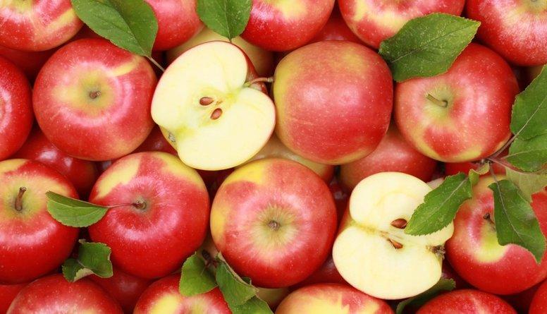 Vai ābolus varam ēst ar visām sēkliņām?