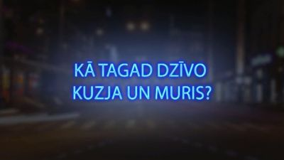 Tvitersāga: Kā tagad dzīvo Kuzja un Muris?