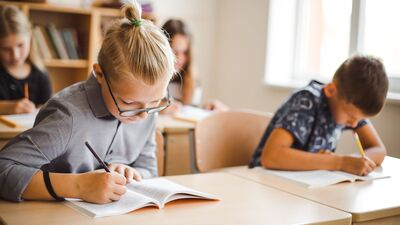 Balodis: Bērniem ir jāmācas skolā pedagogu nevis vecāku uzraudzībā