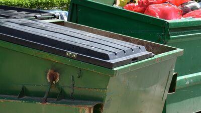 Zelmenis: Varbūt kādam atkritumu krīze ir galvā