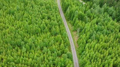ES neizpilda bioloģiskās daudzveidības saglabāšanas mērķus 2020. gadam