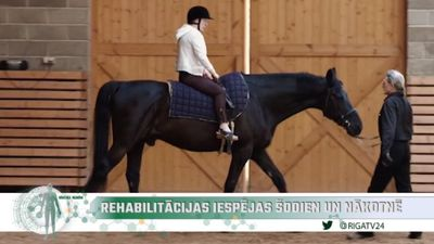 Zirgs kā dziednieks: Reitterapija