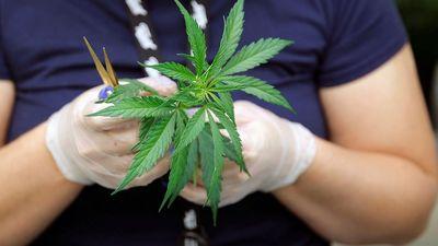 """Arons par medicīnisko marihuānu: """"Ir pacienti, kuriem citas metodes nelīdz.."""""""