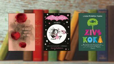 Grāmatas, ko iesaka rakstniece Evija Gulbe