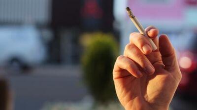 Ikdienas smēķēšanas izplatības tendences pēdējo gadu laikā
