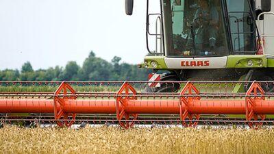 Kāpēc latvieši izvēlās strādāt lauksaimniecības darbus ārpus Latvijas?