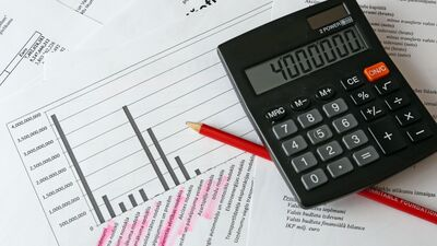 Goldberga: Pati pieeja, kā tiek veidots budžets, ir nepareiza