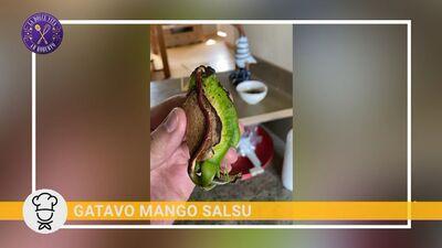 Kā mājas apstākļos izdiedzēt mango sēklu!