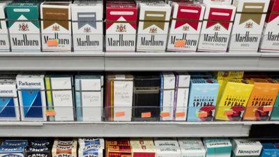 Vērzemnieks: Cigarešu aizliegšana tikai veicinās lielāku interesi par tām