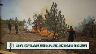 Kādi ir galvenie mežu ugunsgrēku iemesli Latvijā?