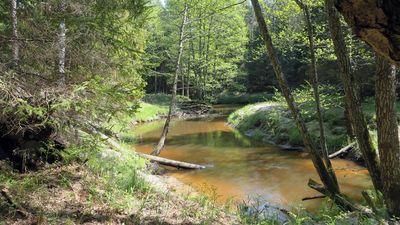 Vai mazās hidroelektrostacijas ir izvarojušas Latvijas upes?