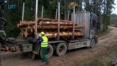 LVM attīsta kokmateriālu pārvadājumu jomu