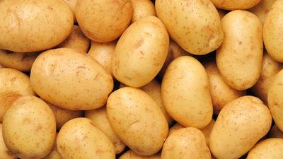 Nenovērtētais dārgums – kartupelis! Mīti un patiesība