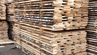 Jārada lielāka pievienotā vērtība kokrūpniecības produkcijai, pauž Geiba