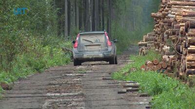 Pēc kokmateriāla - pa koka vairogu brauktuvi