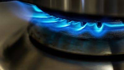 Pētersone-Godmane: Gāzes tarifs citu pakalpojumu cenas neietekmēs