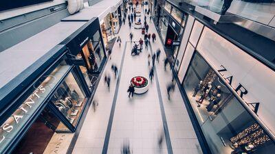 Vanags: Nomas maksas atbalsts tirdzniecības centriem ir principiāli svarīgs