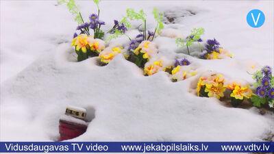 Jēkabpils dzīvnieku kapsētā trīs mēnešu laikā apglabāti 11 mājdzīvnieki