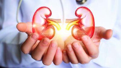 Sarežģījumi un šķēršļi transplantācijas nozarē