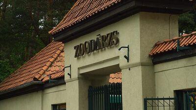 Līdaka: Zooloģiskajam dārzam galvenais nedrīkst būt finanšu rādītājs