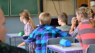 Papule: Neatbalstu mācību gada pagarināšanu, ja skolas netiks galā ar attālināto mācīšanos