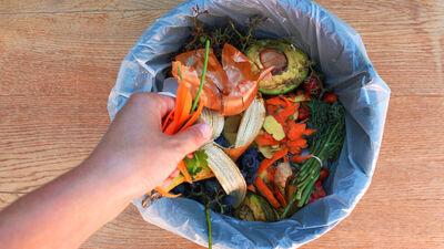 Vai bioloģisko atkritumu šķirošana un izvešana izmaksā dārgi?