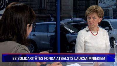 Vaidere: Pirms EP vēlēšanām būs vērojama Krievijas iejaukšanās