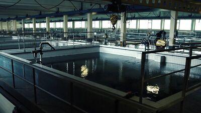 Rīgas dzeramā ūdens attīrīšana ikdienas lietošanai