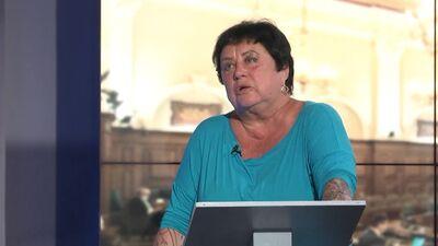 Elita Veidemane: Ierēdņi vada valsti, nevis Ministru kabinets