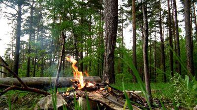 Latvijas mežos saglabājas augsta ugunsbīstamība