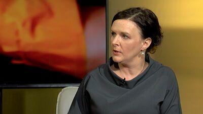 Stepaņenko: Cilvēktiesību ievērošana notiek pateicoties sabiedrībai