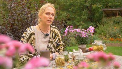Tēju pazinēja dalās ar Latvijā audzēto tēju īpašībām un tās pareizo pagatavošanu