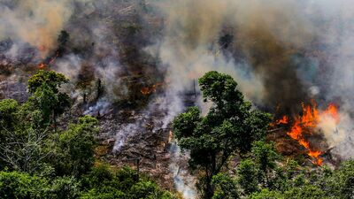 Jaunākās ziņas par ugunsgrēkiem Amazones lietusmežos