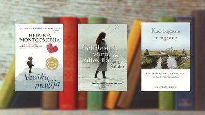 Grāmatas, ko iesaka Elīna Zelčāne