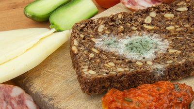 Pārtikas produkti ar pelējumu: ēdami vai metami mēslainē?