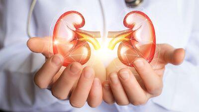 Kāds uzturs var veicināt nierakmeņu veidošanos?
