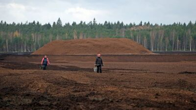 """Kotovičs komentē Valsts kontroles ziņojumu par """"Latvijas Valsts mežiem"""""""